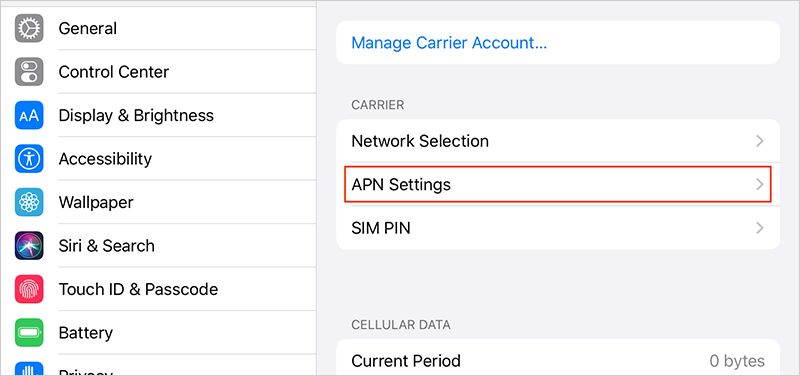 For Personal Hotspot, set up APN (Access Point Name)